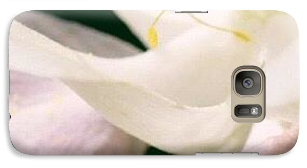 Galaxy Case featuring the photograph Wistful by Penni D'Aulerio