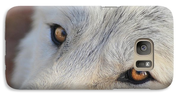 Galaxy Case featuring the photograph Wolf Eyes by Carolyn Dalessandro