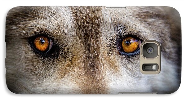 Galaxy Case featuring the photograph Wolf Eyes by Teri Virbickis