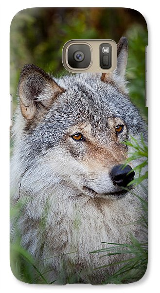 Galaxy Case featuring the photograph Wolf In The Grass by Yngve Alexandersson