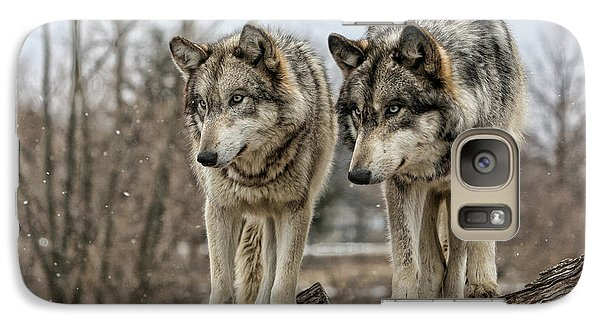 Galaxy Case featuring the photograph Wolf Pair by Shari Jardina