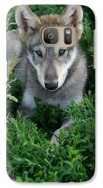 Galaxy Case featuring the photograph Wolf Pup Portrait by Shari Jardina