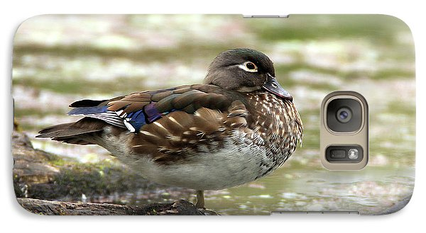Wood Duck Hen Galaxy S7 Case