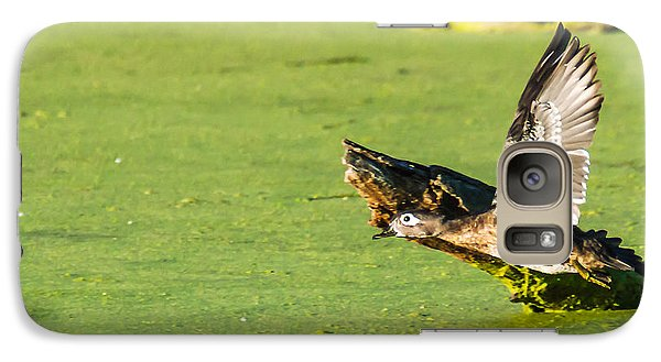 Galaxy Case featuring the photograph Wood Duck Hen Takes Flight by Edward Peterson