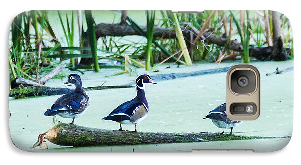 Galaxy Case featuring the photograph Wood Ducks All Grown Up by Edward Peterson