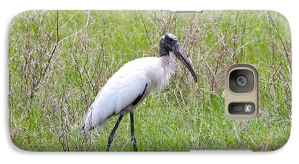 Wood Stork In The Marsh Galaxy Case by Carol Groenen