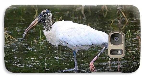 Wood Stork Through The Marsh Galaxy S7 Case by Carol Groenen
