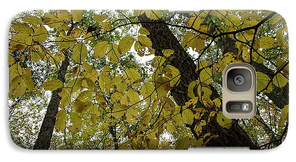 Galaxy Case featuring the photograph Woodland Canopy by Andrew Pacheco