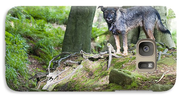 Galaxy Case featuring the photograph Woodland Dog by David Isaacson