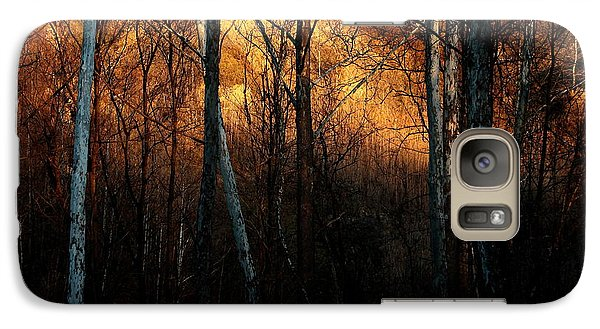 Galaxy Case featuring the photograph Woodland Illuminated by Bruce Patrick Smith