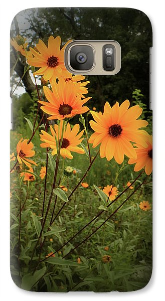 Galaxy Case featuring the photograph Woodland Sunflower by Scott Kingery