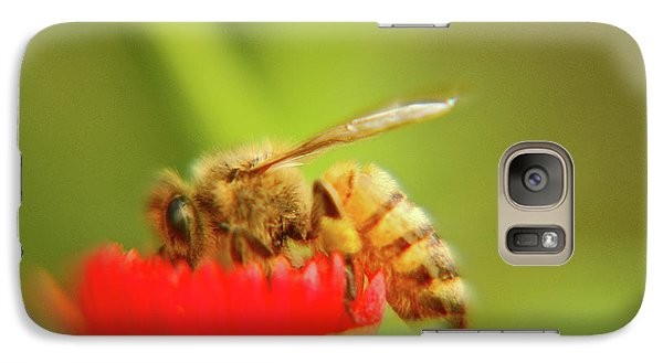 Galaxy Case featuring the photograph Worker Bee by Micah May