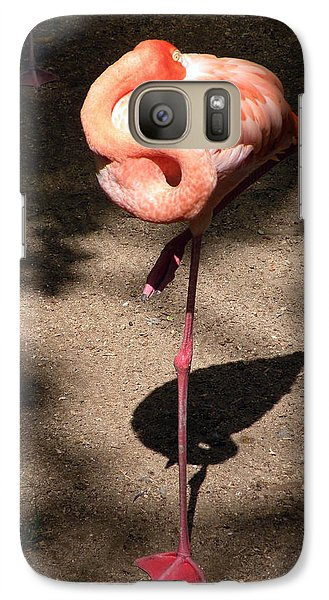 Galaxy Case featuring the photograph Xcaret Mexico Sleeping Flamingo by Dianne Levy