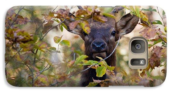 Galaxy Case featuring the photograph Yearling Elk Peeking Through Brush by Michael Dougherty