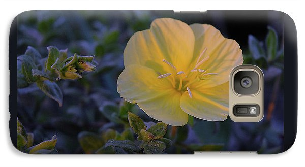 Galaxy Case featuring the photograph Yellow Beach Evening Primrose by Marie Hicks