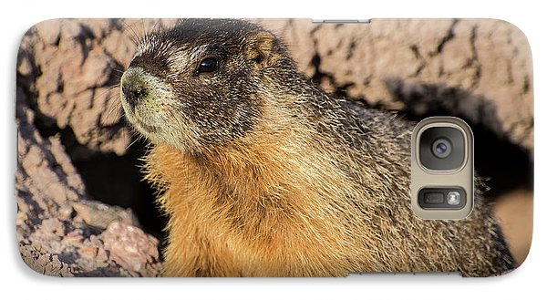 Yellow-bellied Marmot - Capitol Reef National Park Galaxy S7 Case by Gary Whitton