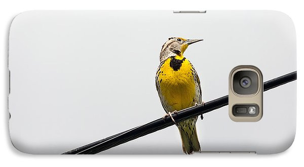 Yellow Bird Galaxy S7 Case by Rebecca Cozart