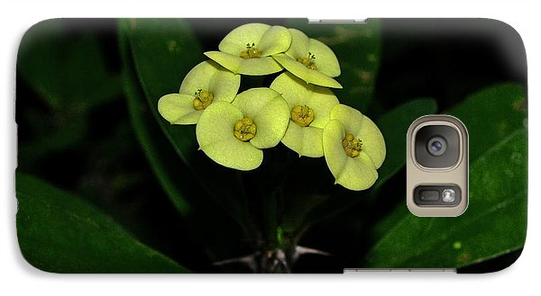 Galaxy Case featuring the photograph Yellow Cactus Flowers 001 by George Bostian