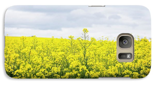 Galaxy Case featuring the photograph Yellow Canopies by Ivy Ho
