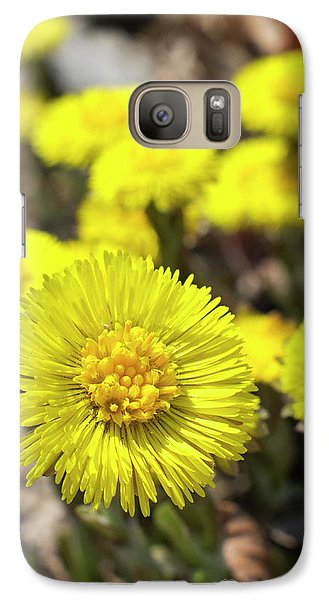 Galaxy Case featuring the photograph Yellow Coltsfoot Flowers by Christina Rollo