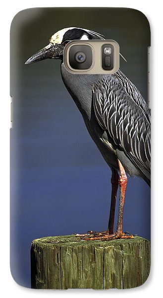Galaxy Case featuring the photograph Yellow-crowned Night Heron by Sally Weigand