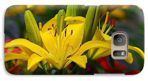Galaxy Case featuring the photograph Yellow Day Lily 20120614_55a by Tina Hopkins