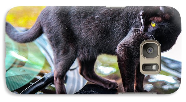 Galaxy Case featuring the photograph Yellow Eyed Cat by Madeline Ellis