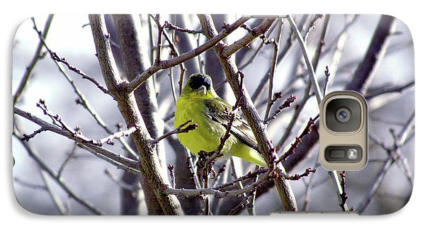Galaxy Case featuring the photograph Yellow Finch by Bonnie Muir