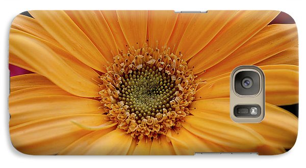 Galaxy Case featuring the photograph Yellow Gerbera Daisy by Ivete Basso Photography