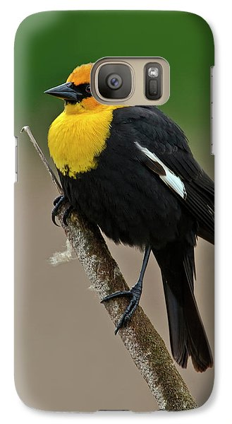 Yellow Headed Blackbird Galaxy S7 Case