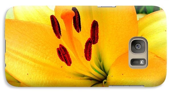 Galaxy Case featuring the photograph Yellow Lilies 1 by Randall Weidner