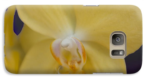 Galaxy Case featuring the photograph Yellow Orchard by Linda Constant