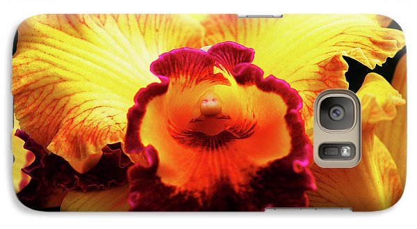 Galaxy Case featuring the photograph Yellow-purple Orchid by Anthony Jones