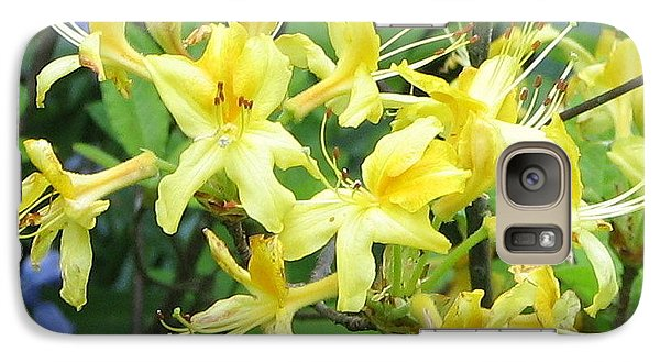 Galaxy Case featuring the photograph Yellow Rhododendron by Carla Parris