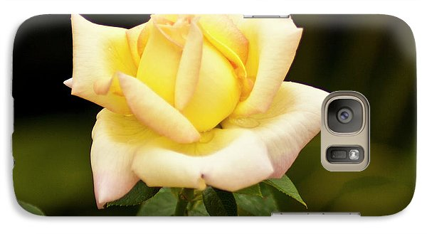 Galaxy S7 Case featuring the photograph Yellow Rose by Bill Barber