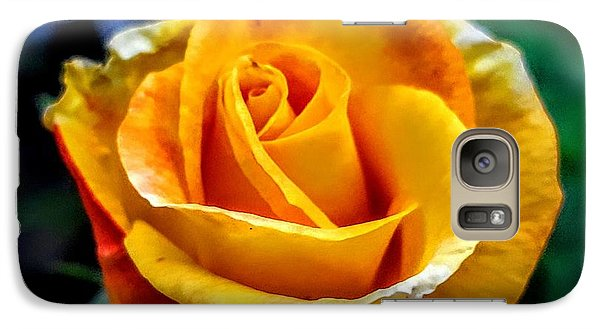 Galaxy Case featuring the photograph Yellow Rose by Garnett Jaeger