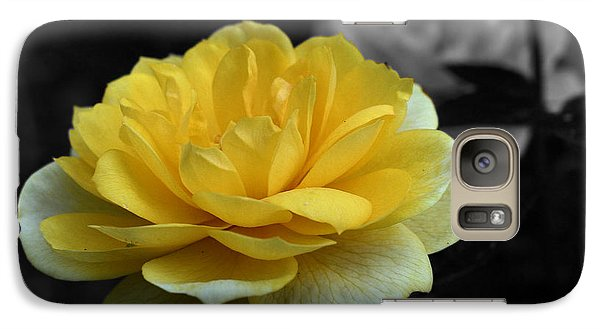 Galaxy Case featuring the photograph Yellow Rose In Bloom by Smilin Eyes  Treasures