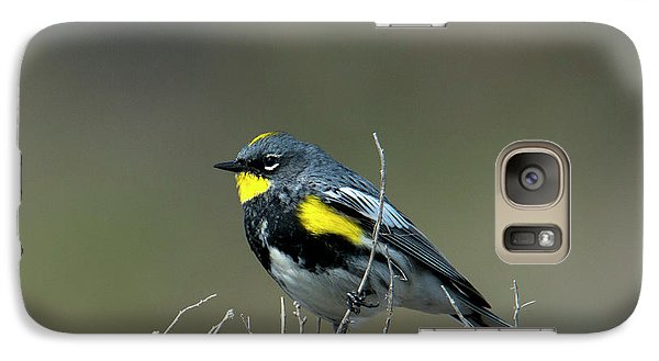 Warbler Galaxy S7 Case - Yellow-rumped Warbler by Mike Dawson