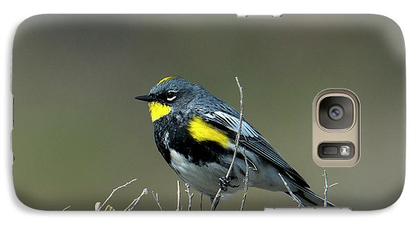 Galaxy Case featuring the photograph Yellow-rumped Warbler by Mike Dawson