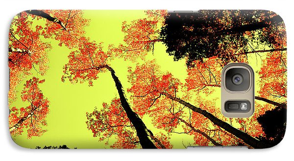 Galaxy Case featuring the photograph Yellow Sky, Burning Leaves by Kevin Munro