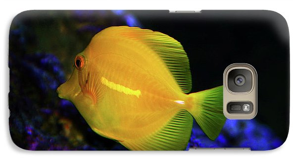 Galaxy Case featuring the photograph Yellow Tang by Anthony Jones