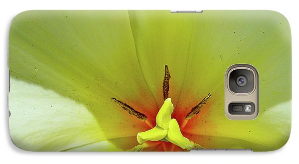 Galaxy Case featuring the photograph Yellow Tulip by Susan Cole Kelly