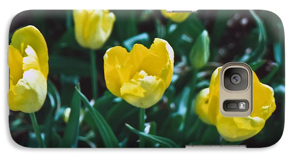 Galaxy Case featuring the photograph Yellow Tulips--film Image by Matthew Bamberg