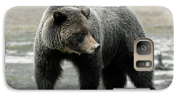 Galaxy Case featuring the photograph Yellowstone Grizzly A Pondering by Bruce Gourley
