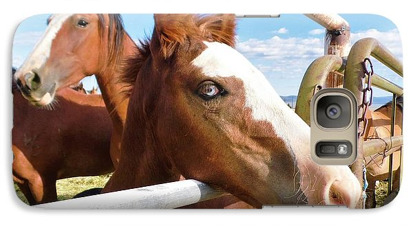 Galaxy Case featuring the photograph Young Blue Eyed Horse by Deborah Moen