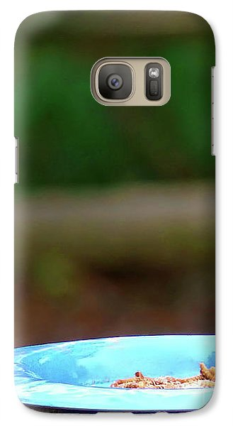 Galaxy Case featuring the photograph Young Bluebird's Delight by Sue Melvin
