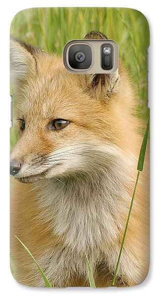 Galaxy Case featuring the photograph Young Fox by Doris Potter