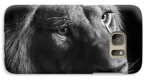 Young Lion In Black And White Galaxy Case by Lukas Holas