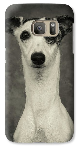 Galaxy Case featuring the photograph Young Whippet In Black And White by Greg and Chrystal Mimbs