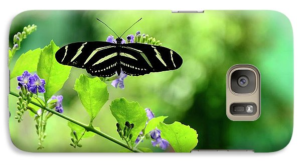 Galaxy Case featuring the photograph Zebra Longwing Butterfly by Corinne Rhode